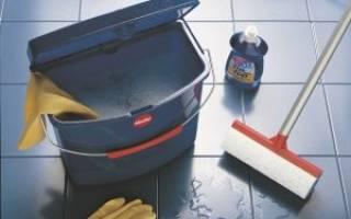 Влажная уборка дома – необходимая процедура для чистоты