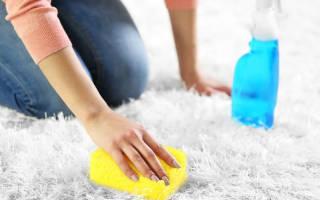 Как почистить ковер в домашних условиях от запаха мочи?
