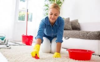 Как почистить ковер в домашних условиях быстро и эффективно?