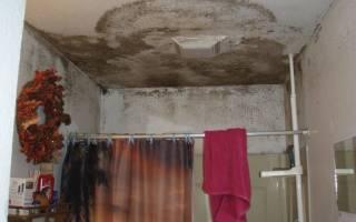 Грибок на потолке в ванной – как избавиться?