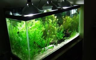 Декоративная подсветка аквариума идеи