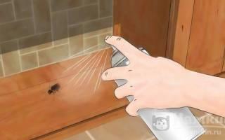Как избавиться от термитов?