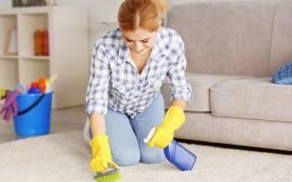 Как почистить палас не снимая с пола?